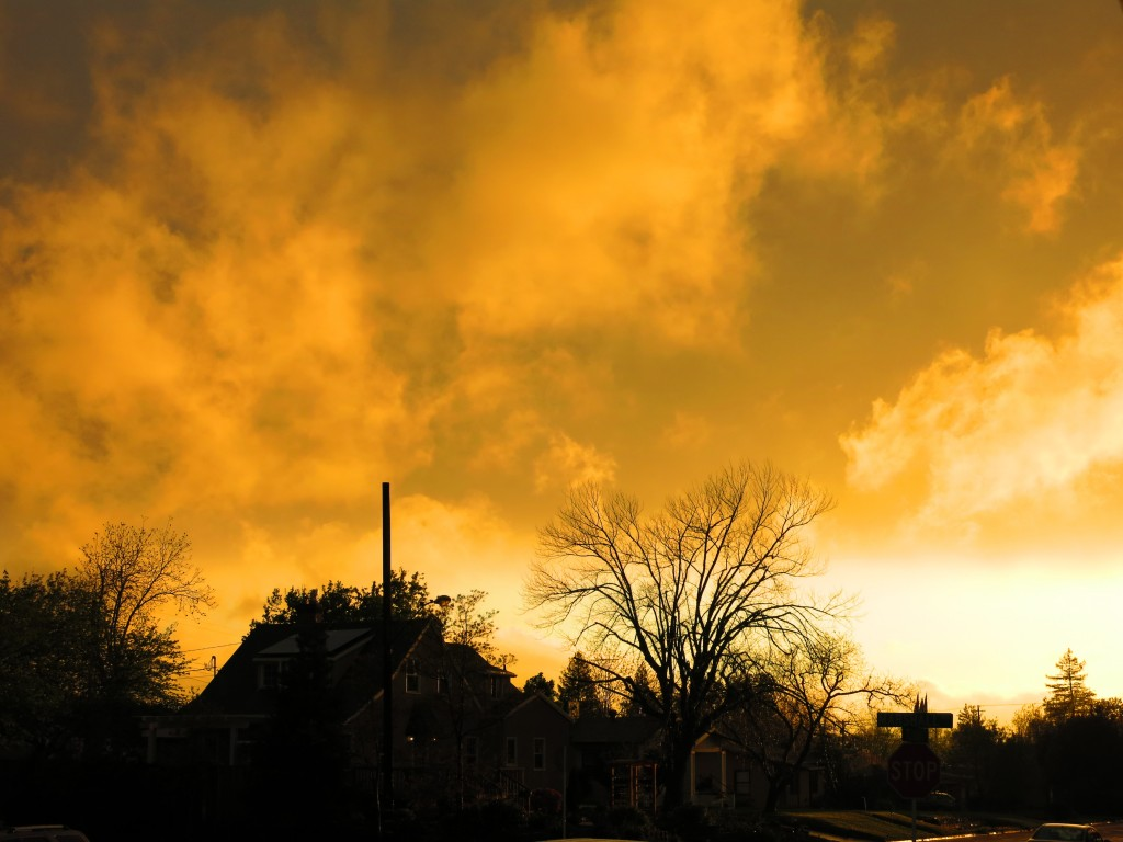 Sunset during a break in the storm. March 31, 2014